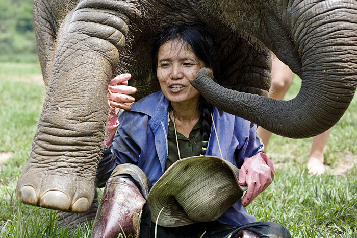 photoblog image The elephant whisperer